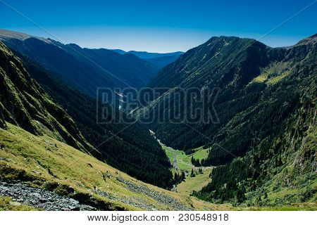 Green Forest On A Long Valley In Fagaras Mountains
