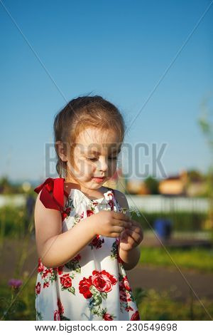 Cute Girl In Summer Dress Collects Wildflowers. Beautiful Child Walks In Nature. Flower Pollen Aller