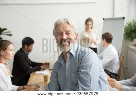 Smiling Male Senior Team Leader, Aged Teacher Looking At Camera With Office People At Background, Ha