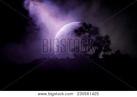 Silhouette Tree On Full Moon Background. Full Moon Rising Above Japanese Style Tree Against Toned Fo