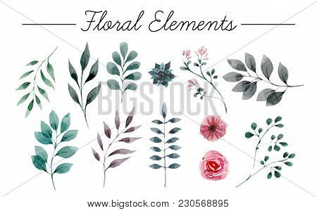 Set Of Flowers Painted In Watercolor On White Paper. Sketch Of Flowers And Herbs. Wreath, Garland Of