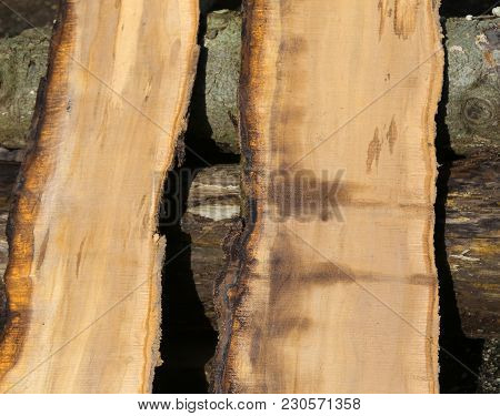 Two Pieces Of Tree Trunk Sawn Perfectly In The Sawmill
