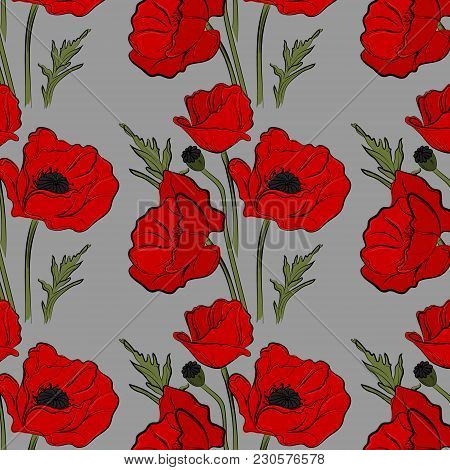 Nature Floral Poppy Pattern Vector Image. Red Petal Nature Plants Isolated On Blue Background. Botan