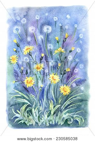 Dandelions In The Forest, Watercolor Painting In A Decorative Manner.
