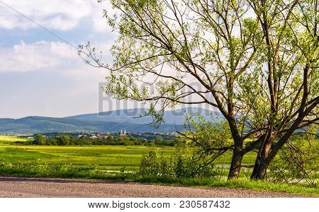 Tree Along The Road In Mountainous Countryside. Beautiful Landscape With Village In The Distance