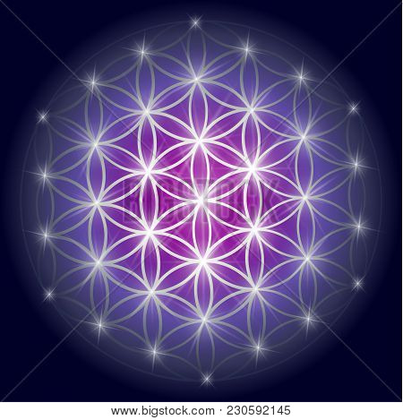 Sacred Geometry Illustration: Variant Of The Flower Of Life, Also Known As The Pattern Of Creation.