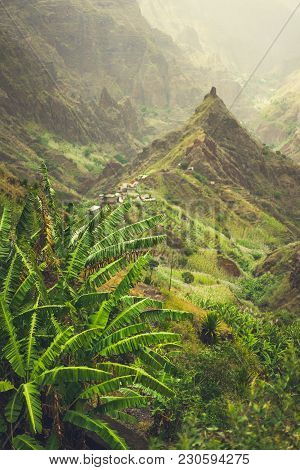 Banana Plantation In Xo-xo Valley. Trekking Route 202 Lead Between Harsh Peaks Of The Mountains Alon