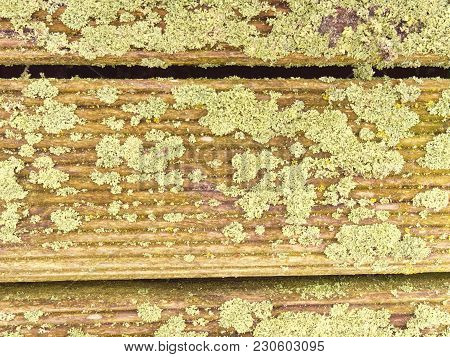 Hardwood Board Made Of Hardwood Resists Weathering. Wooden Pier Above Sea. Touristic Mole With Still