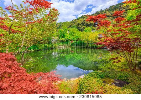 Scenic Landscape Of Hojo-ike Pond Surrounded By Red Linden Trees. Eikan-do, The Official Name Is Zen
