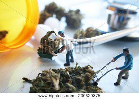 Medical Marijuana Industry High Quality Stock Photo