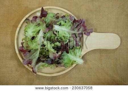 Green Oak And Red Oak Vegetable Salad On Wood Dish