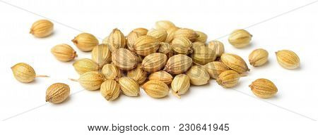 Close Up Of Dried Coriander Seeds Isolated On White Background