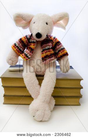 Book Rat