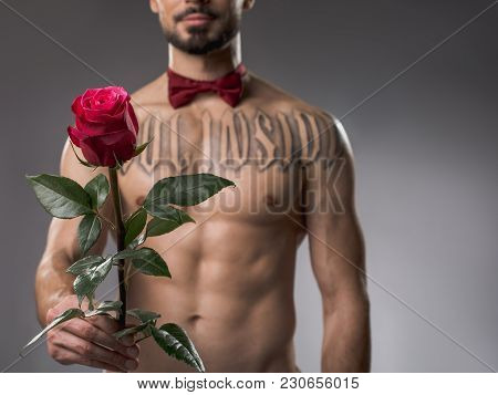 Calm Beefy Man Without Shirt Presenting Red Rose. Focus On Flower. Isolated On Background