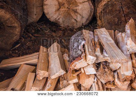 Chopped Wood, Firewood Harvested For The Winter