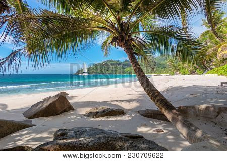Paradise Island. Sandy Beach With Palm Trees And A Sailing Boat In The Turquoise Sea.