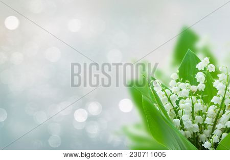 Lilly Of The Valley Flowers On Blue Bokeh Banner With Copy Space