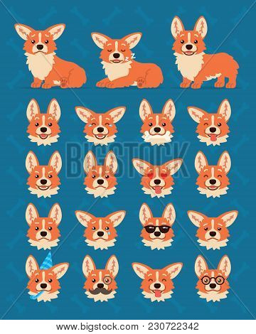 Cute Welsh Corgi Constructor. Illustration Of Corgi Dog In Different Poses And Its Head Shows Variou