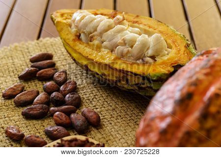 Raw Cocoa Pod Fruit, Cacao Beans On Wooden Table