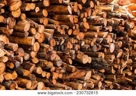 Natural Wooden Background - Closeup Of Chopped Firewood.