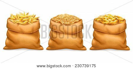 Vector Realistic Bag With Purified And Unrefined Wheat Grains, Barley With Wheat Ears Isolated On Wh