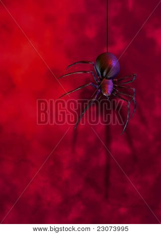 Black Widow Spider On Red Wall