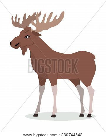 Moose Cartoon Character. Moose With Large Horns Flat Vector Isolated On White. North America And Eur