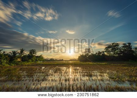 Long Exposure Landscape With Clouds Moving Rice Field And Sunset.