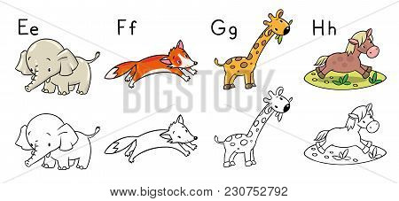 Coloring Book Or Coloring Picture Of Funny Elephant, Fox, Hippo And Giraffe. Animals Zoo Alphabet Or