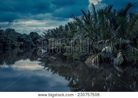 Scenic Lagoon At Night Near Tangalle, Sri Lanka. Amazing View Of The Lagoon In Rainforest. Mysteriou