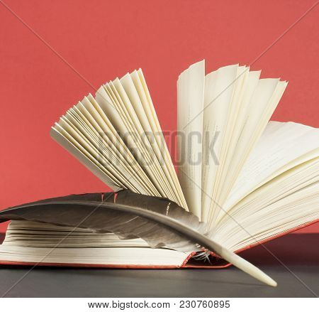 Open Book And Quill Pen On The Table At Red Background. Free Copy Space. Education Concept.