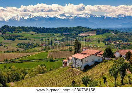 Rural houses on the hill overlooking green vineyards and mountains ridge on background in spring in Piedmont, Northern Italy.
