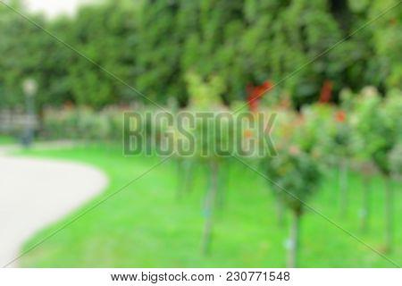 Abstract park garden