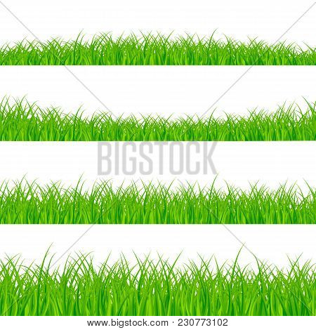 Grass Borders Set. Grass Plant Panorama. Grass Border Or Frame. Vector Illustration Isolated On Whit
