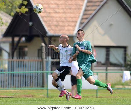KAPOSVAR, HUNGARY - AUGUST 27: Richard Csaki (in green) in action at the Hungarian National Championship under 18 game between Kaposvar (green) and Gyor (white) August 27, 2011 in Kaposvar, Hungary.