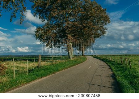 Empty Asphalt Country Road Passing Through Green Fields. Countryside Landscape On A Sunny Day In Nor