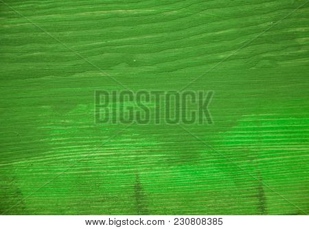 Green Wood Texture. Green Wood Background. Closeup View Of Green Wood Texture And Background. Abstra