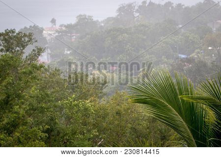 Lush Green Scenery And Heavy Tropical Rain In Caribbean