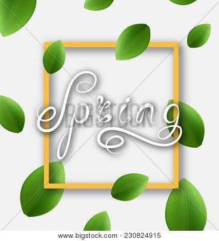 Spring Lettering, Calligraphic Text, Headline Pattern - Illustration Vector