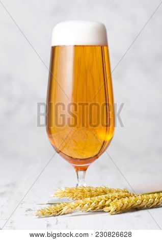 Glass Of Lager Beer With Foam On White Wooden Background
