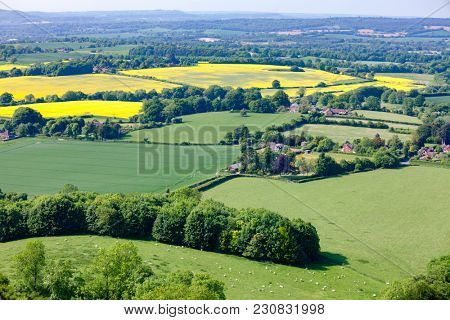 Idyllic english rural landscape with grazing sheep and yellow rapeseed fields as viewed from South Downs hill in  Sussex, Southern England, UK