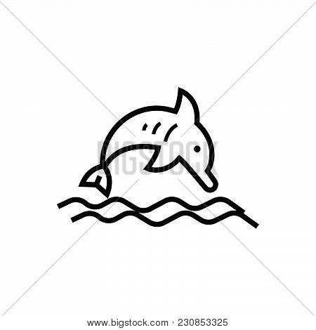 Jumping Dolphin Vector Icon On White Background. Jumping Dolphin Modern Icon For Graphic And Web Des