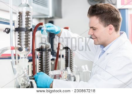 Scientist in research lab analyzing samples in the laboratory