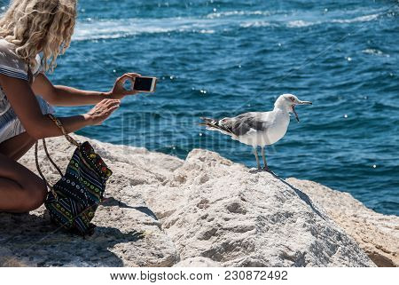 A Young Blonde Woman Tries To Make Photo Of A Screaming Seagull Standing On A Stone Pier Near The Se