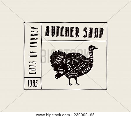 Stock Vector Turkey Diagram In The Style Of Handmade Graphics. Label Template For Butcher Shop. Blac