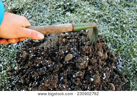 A Man With Hoe Digging A Molehill In Morning