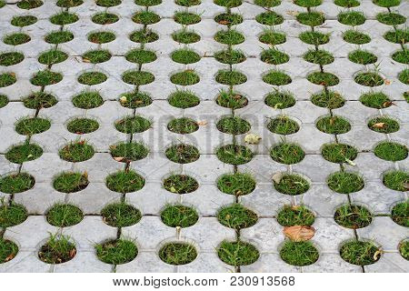 Decorative Pavement With Holes Filled With Grass