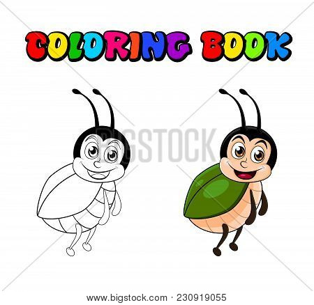 Beetle Cartoon Coloring Book Isolated On White Background.