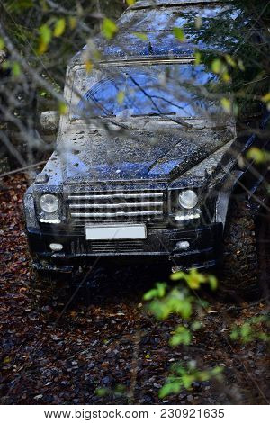 Dirty Offroad Car In Fall Forest With Headlights On, Defocused. Powerful Black Suv Rides With Obstac