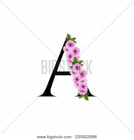 Letter A Floral Sakura Ornament Isolated On White Background
